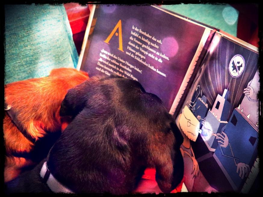 Auch Dackel lesen VAMPI!